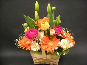 元気いっぱいな春の…|「オカダフローリスト」 (三重県松阪市の花屋)のブログ